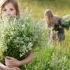 Cosmetici naturali: il piacere del sapone