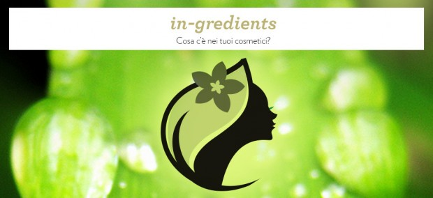 Inserisci gli ingredienti e scopri se un  cosmetico è naturale